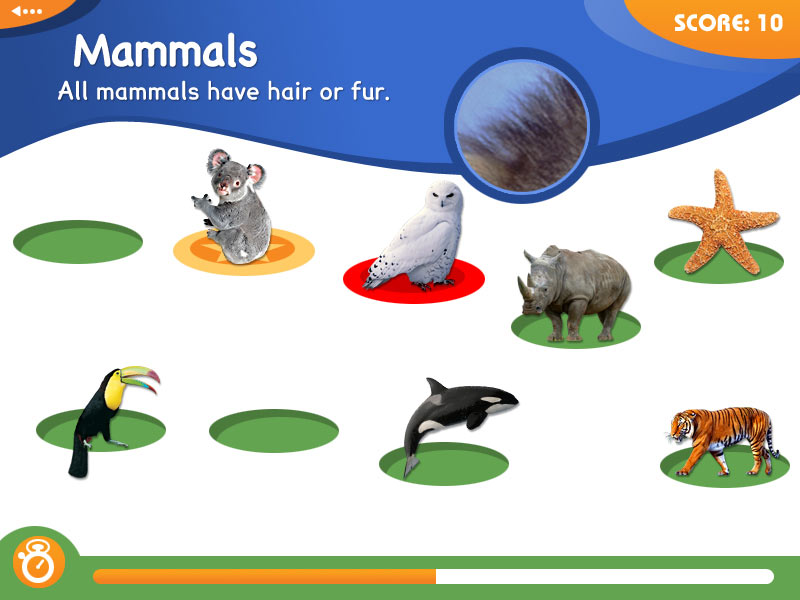 Animal Genius screen shot