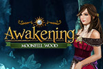 After waking from a long sleep, Princess Sophia finds herself in a world devoid of people in the hidden object game Awakening: Moonfell Wood!
