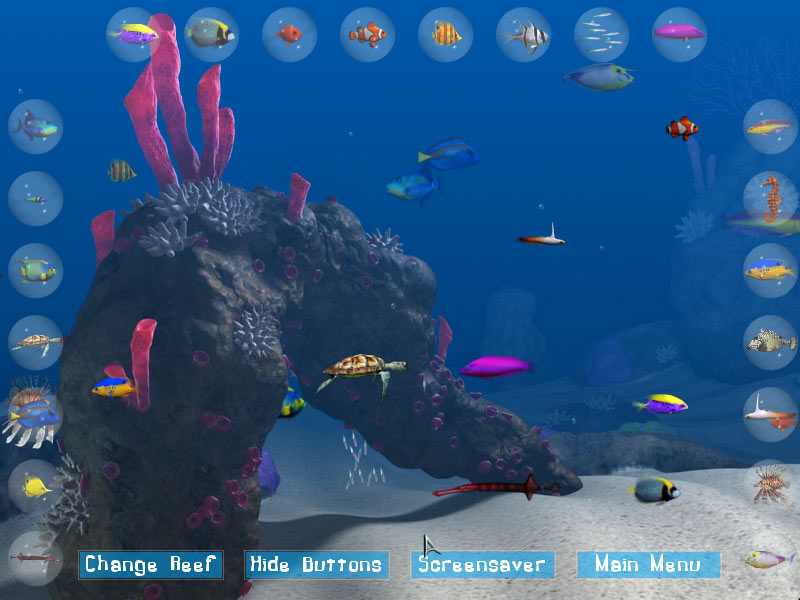 Big Kahuna Reef screen shot