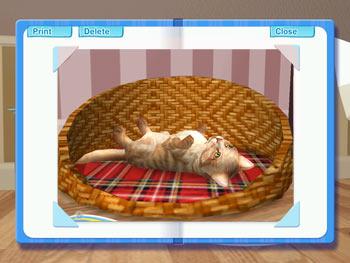 Petz Catz 2 screen shot