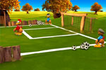 Screenshot of Crazy Chicken Soccer