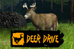 Deer Drive is an arcade-style hunting simulation with plenty of game!