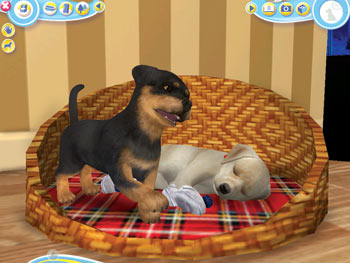 Petz Dogz 2 screen shot