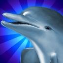 Dolphins Dice Slots - logo