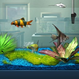 FishCo - Breed, raise, and sell freshwater fish and plants in FishCo! - logo