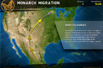 Screenshot of Great Migrations