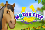 Join thousands of other horse lovers in Horse Life Adventures.  Build your dream ranch, train your horses and bring home the blue ribbon!