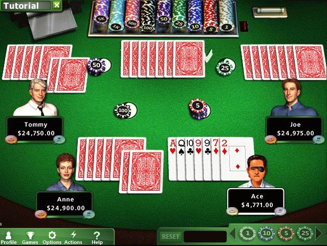 Игра Hoyle Casino Games Скачать Торрент Бесплатно