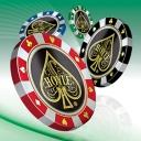 Hoyle Casino Games 2011 - logo