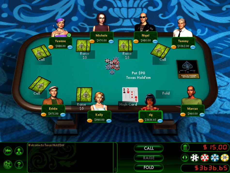 Hoyle Casino Games 2011 screen shot