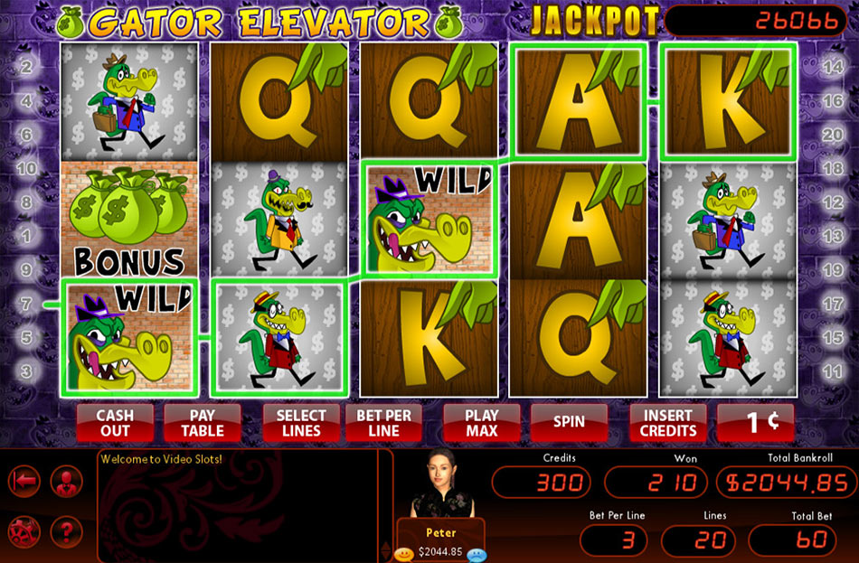 Hoyle Gator Elevator screen shot