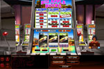 Screenshot of Hoyle Slots 2011