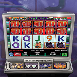 IGT Slots Wild Wolf - IGT Slots Wild Wolf features authentic casino slot machines from IGT - The World's Leading Slot Machine Manufacturer! - logo