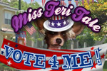 Miss Teri Tale - Vote 4 Me dives into secrets & politics in Peeking Town!