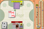 Screenshot of Cribbage on Pogo