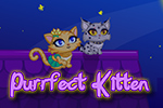 It's feline fashion at its finest!  Customize your cat any way you please!  Boy or girl?  Cape or necklace?  Design your Purrfect Kitten today!