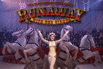 Runaway with the Circus is a beautiful love story set in 1930s France that contains spectacular costumes and engaging hidden object gameplay!