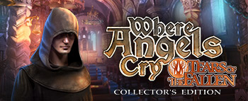 Where Angels Cry: Tears of the Fallen Collector's Edition - image