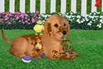 Screenshot of Wonder Pets! Save the Puppy