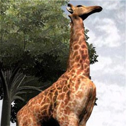 Zoo Vet - Learn about life at the zoo and care for interesting animals. - logo